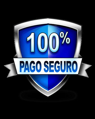 100% pago seguro con Diseño Web Eficaz